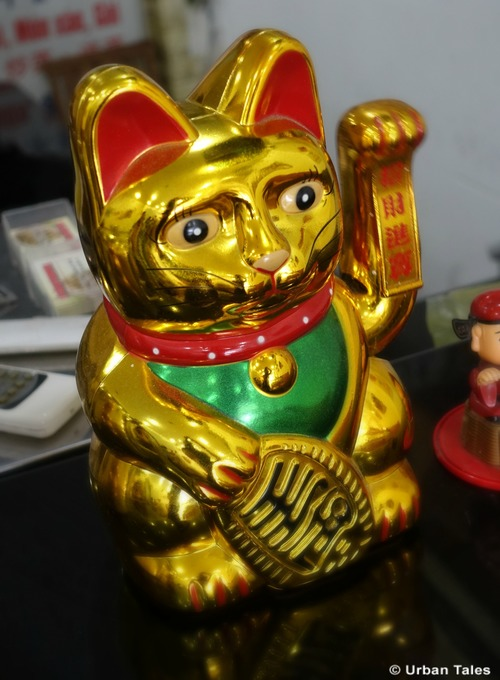 the-fortune-cat